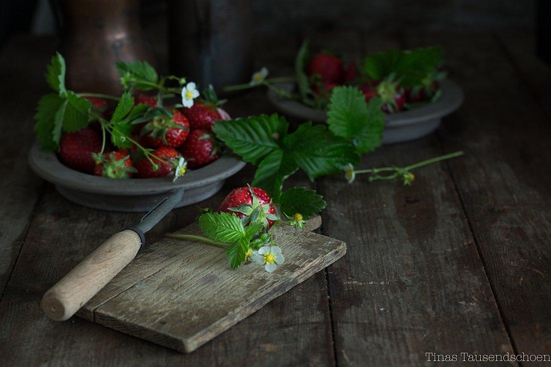 Erdbeer Frischkäse Würfel-24_blog