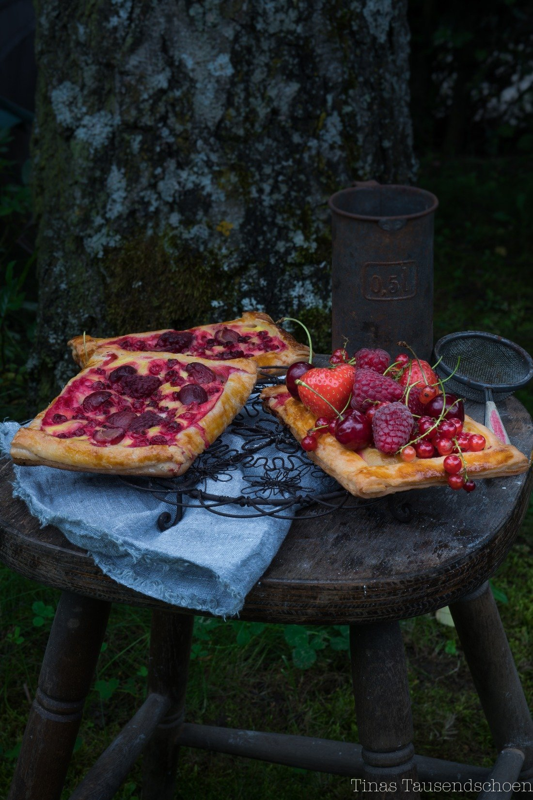 Beerentartelettes-2-4_blog