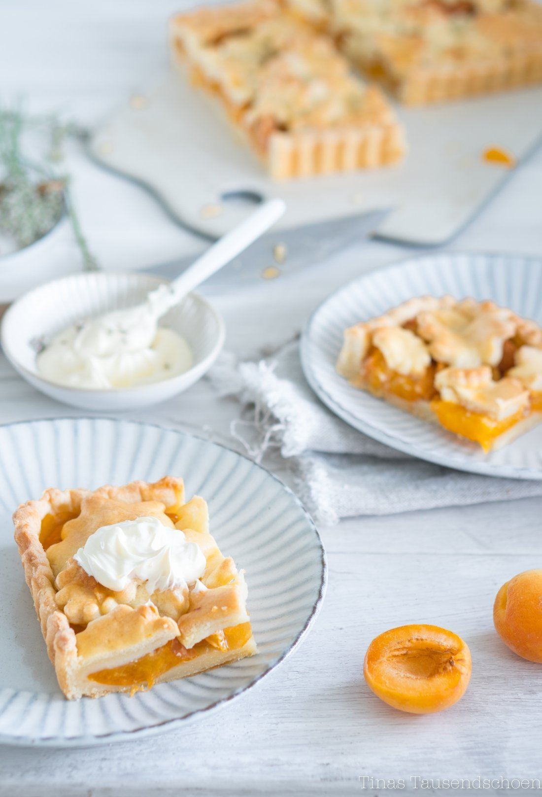 Apricot Slab Pie-44_blog