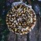 Einfaches Rezept für einen klassischen Zwetschgenkuchen mit Hefeteig wie von Oma